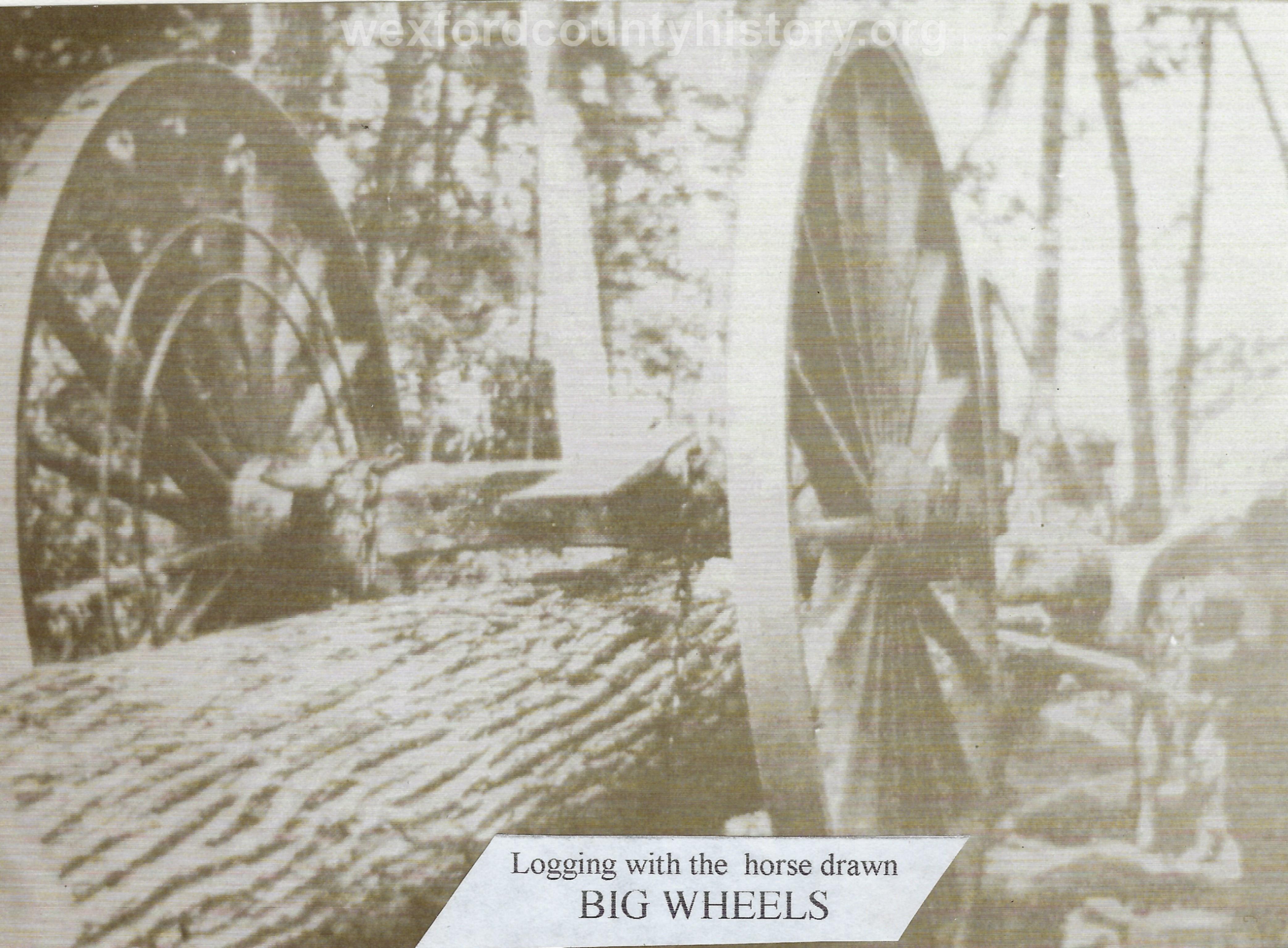 Cadillac-Lumber-Michigan-Logging-Wheels-4
