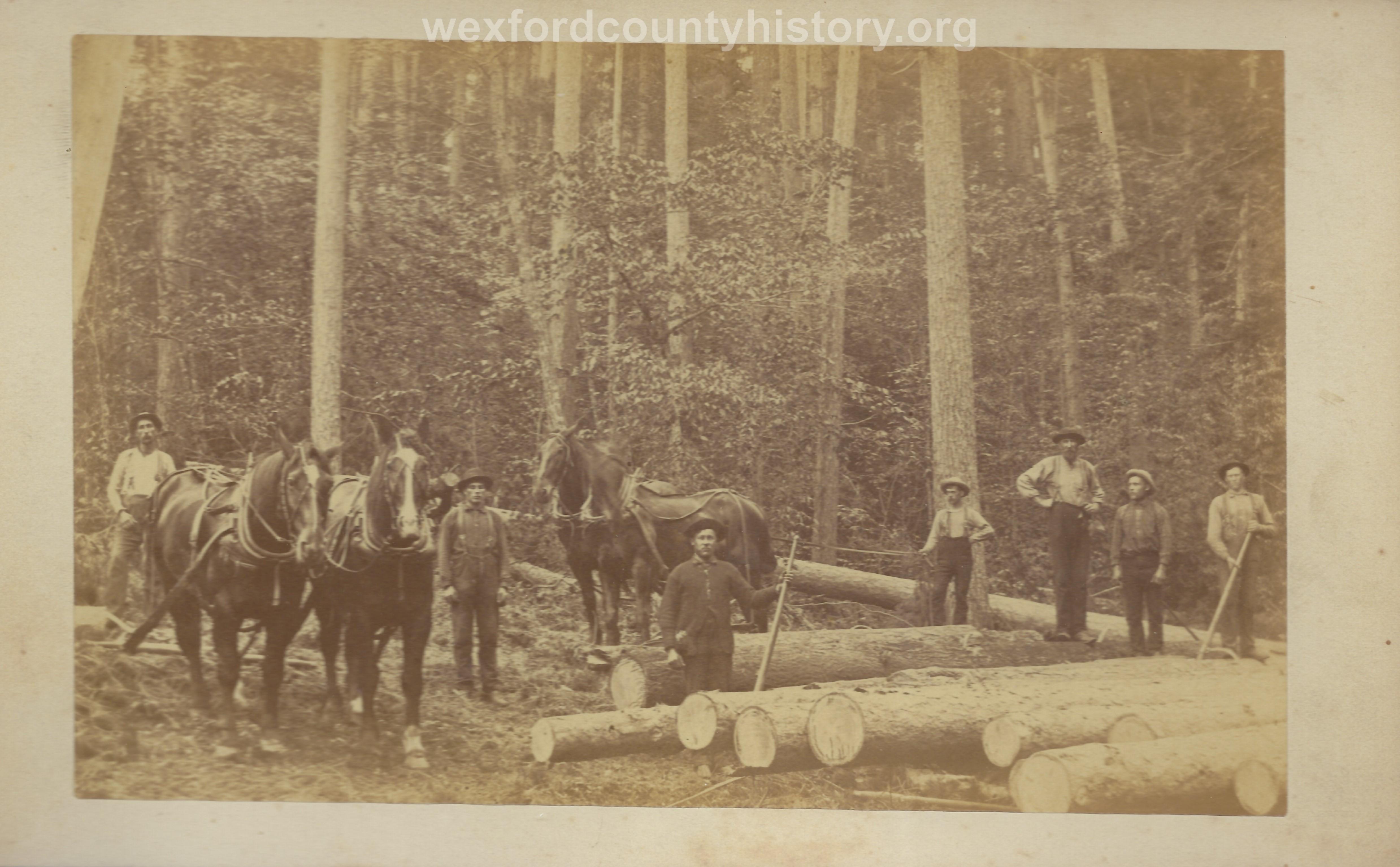 Cadillac-Lumber-Misc-Lumber-Scene-1-42