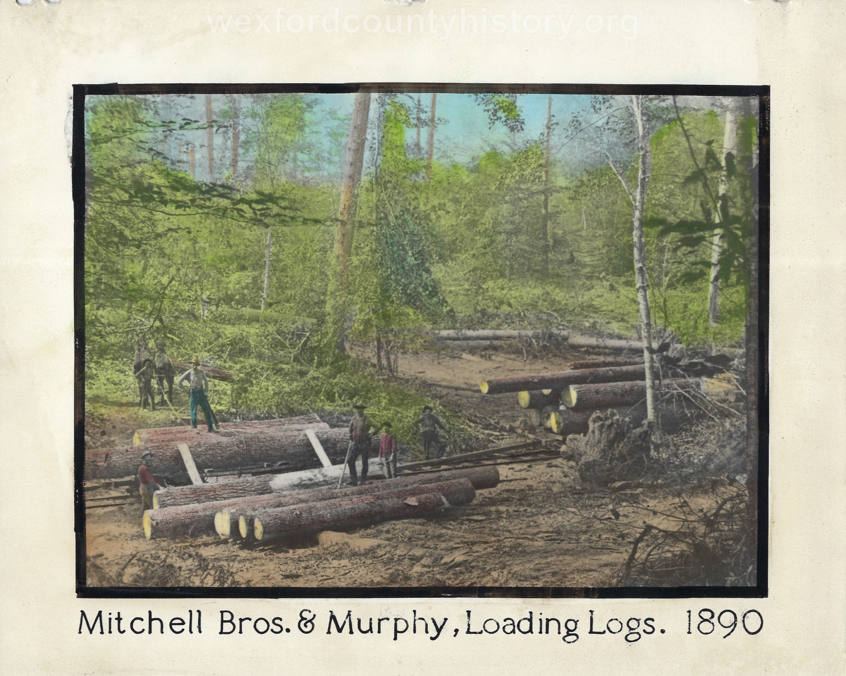 Cadillac-Lumber-Mitchell-Bros-and-Murphy-Logs