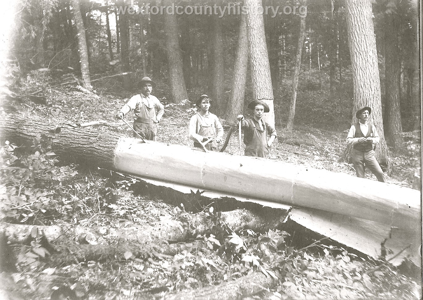 Cadillac-Lumber-Peeling-Bark-Off-Cut-Trees-2