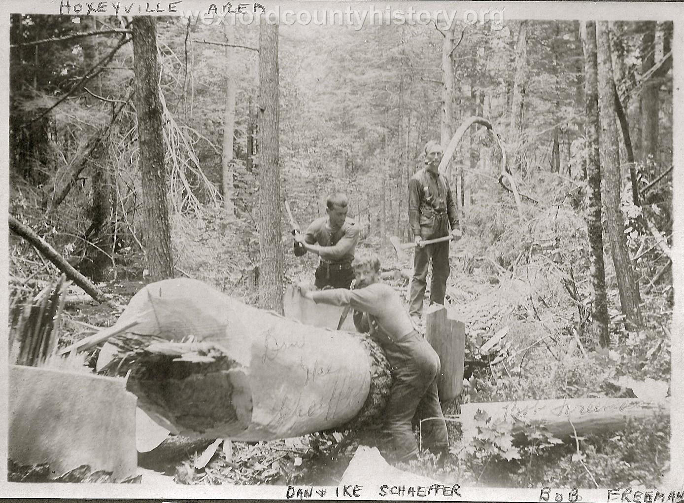 Cadillac-Lumber-Peeling-Bark-Off-Cut-Trees