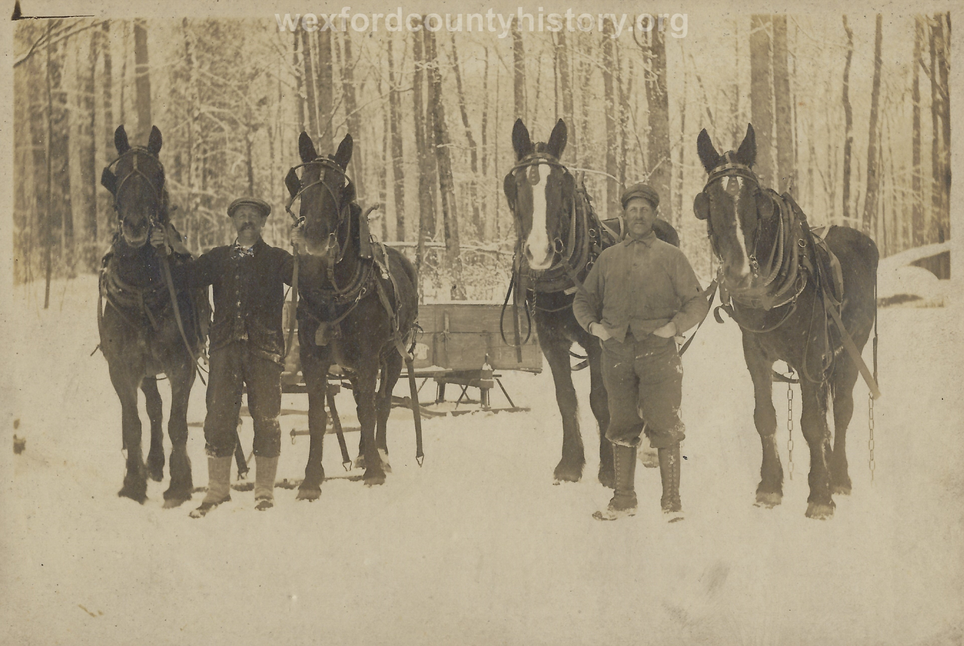 Cadillac-Lumber-Two-Lumberjacks-With-Two-Horse-Teams-And-Empty-Sled