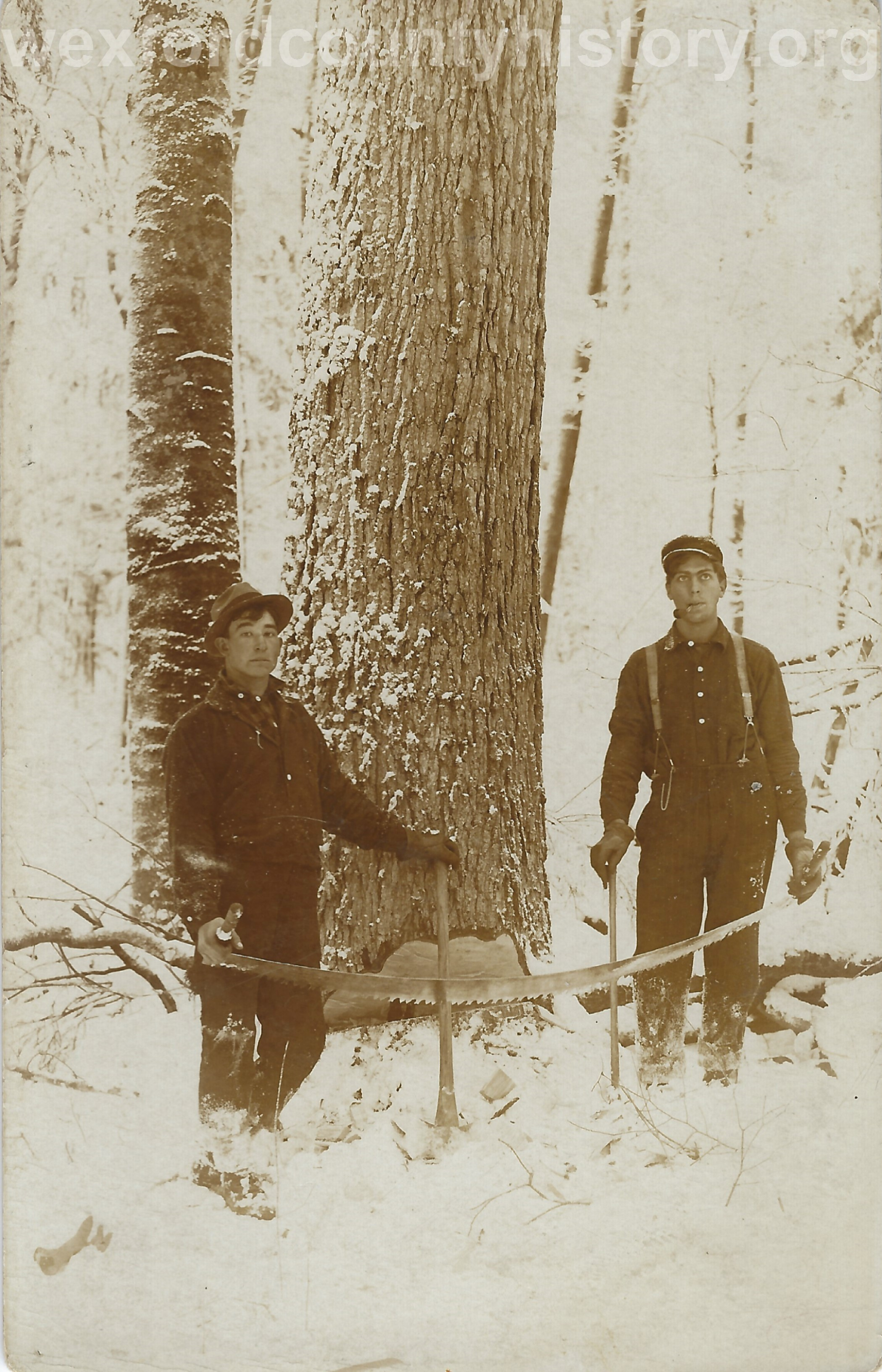 Cadillac-Lumber-Two-Men-With-Crosscut-Saw