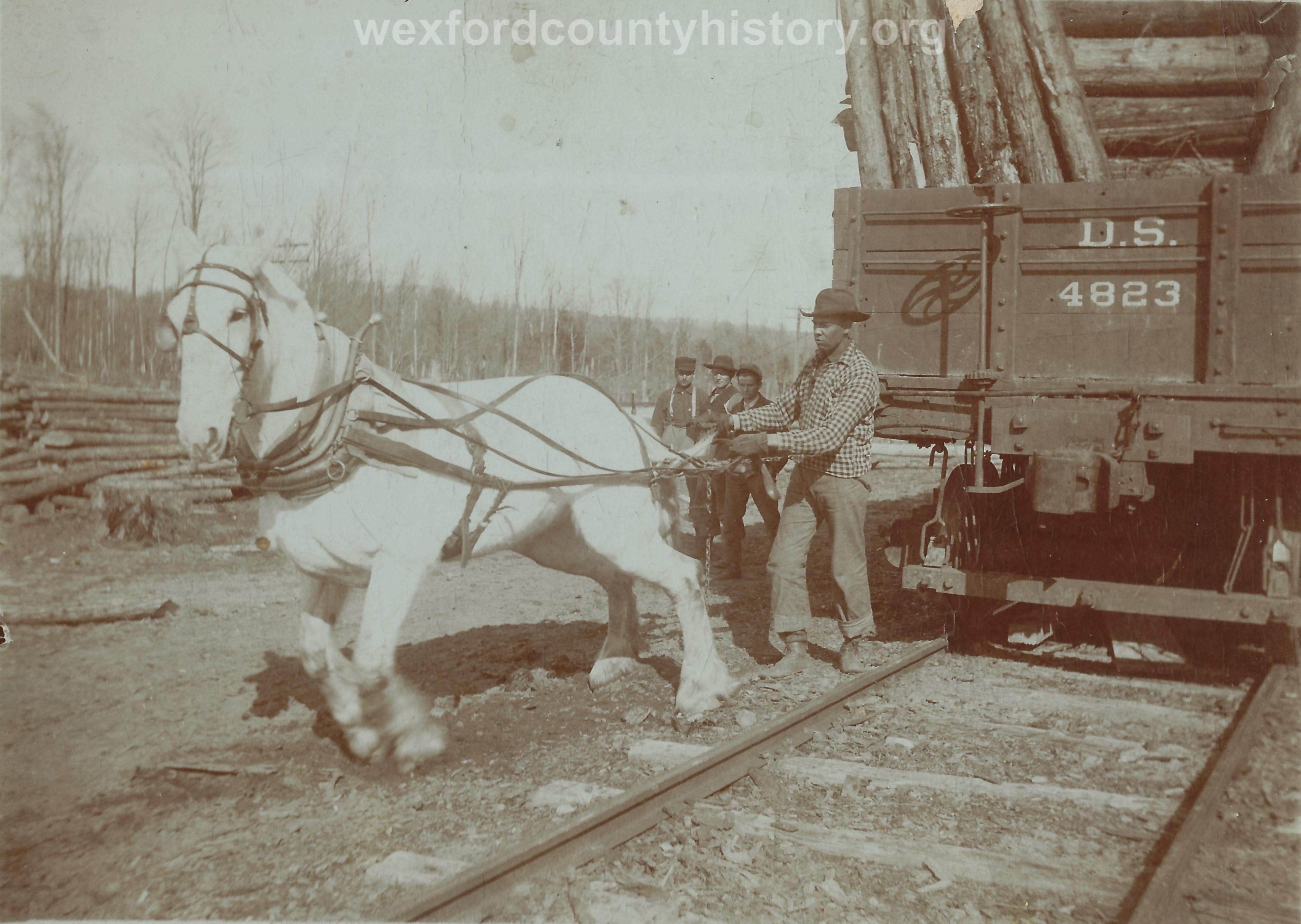 Cadillac-Lumber-White-Horse-Near-Railroad-Car