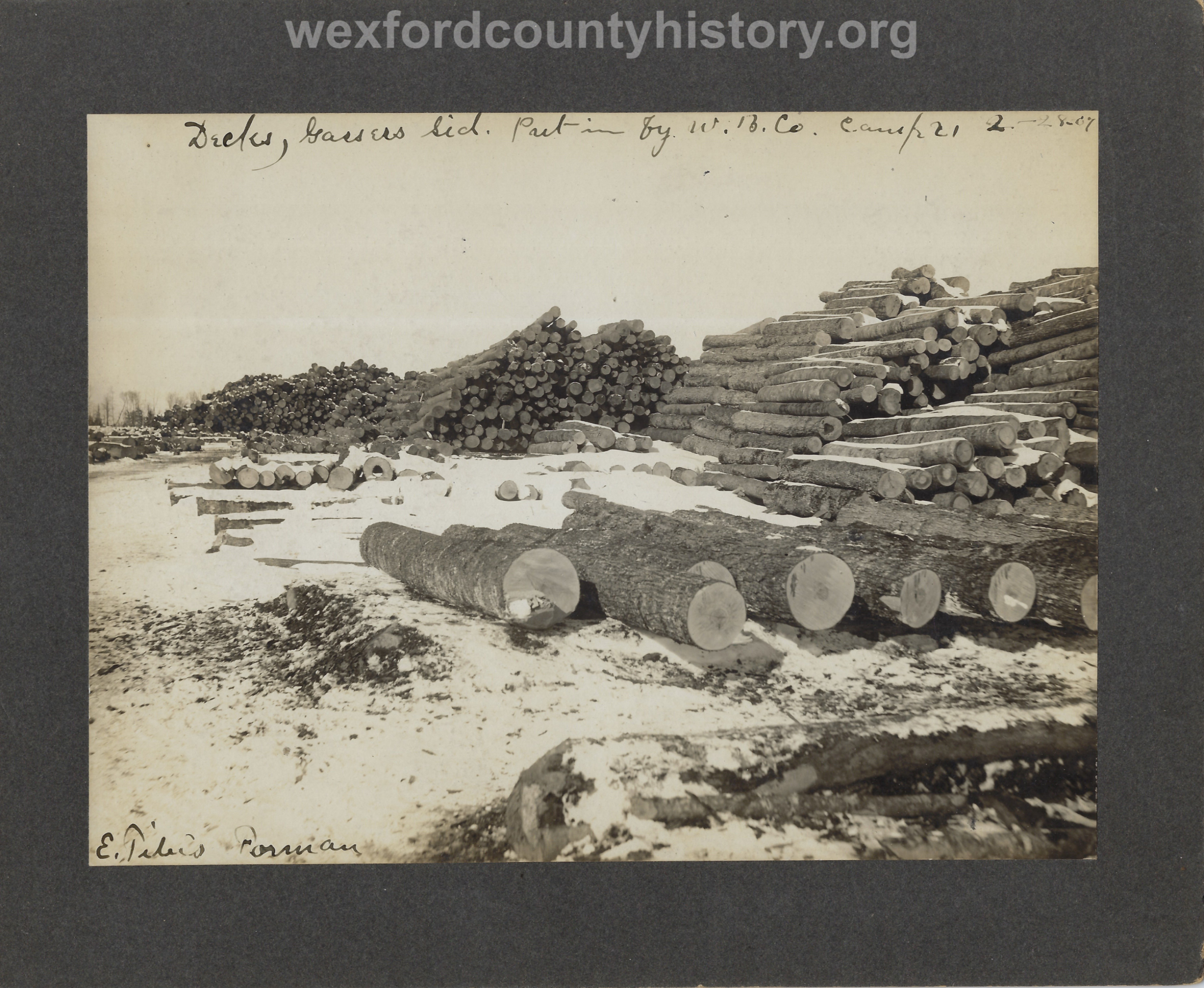 Cadillac-Lumber-Williams-Brothers-Company-Camp-Near-Harrietta-Log-Deck-at-Gassers-Siding-Cut-And-Hauled-By-Williams-Brothers-Company-Camp-21-Feb-28-1907
