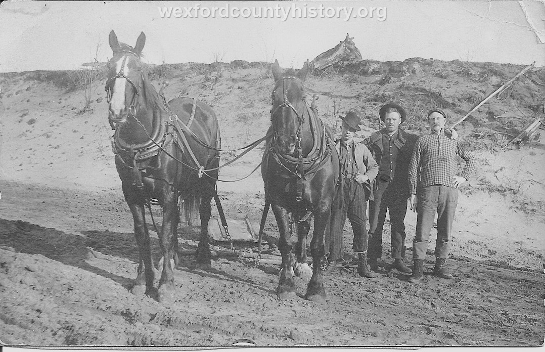 Fletcher Family With Horse Team