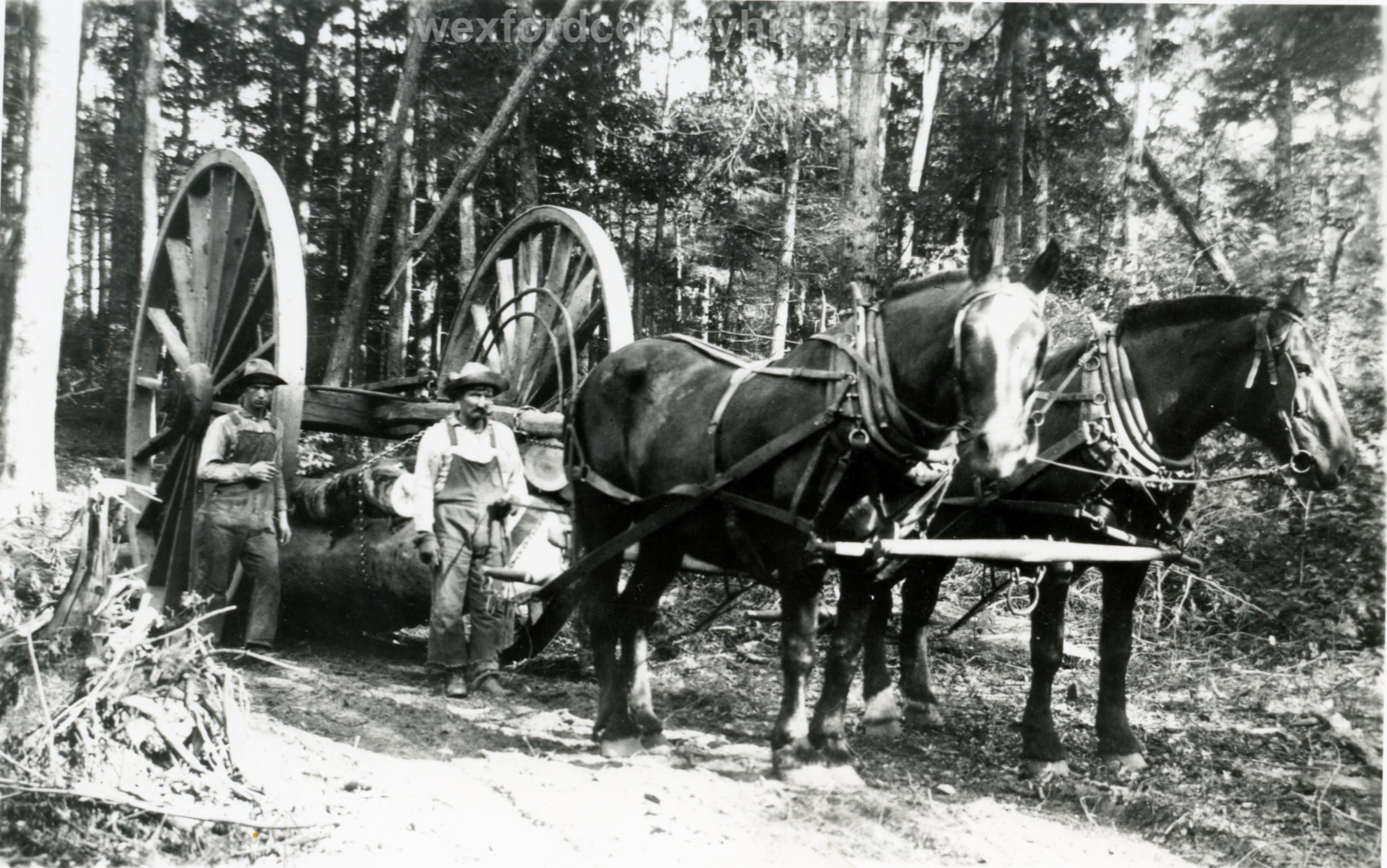 Hoxeyville-Lumber-Peck-Lumber-Camp