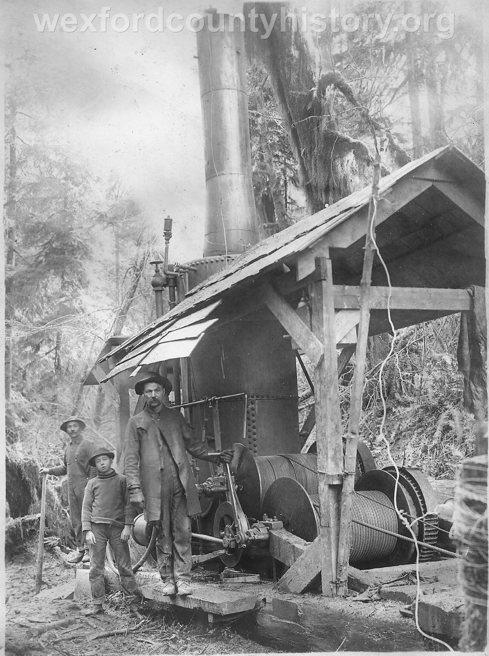 Wexford-County-Lumber-Timber-Harvest-Circa-1890s-12