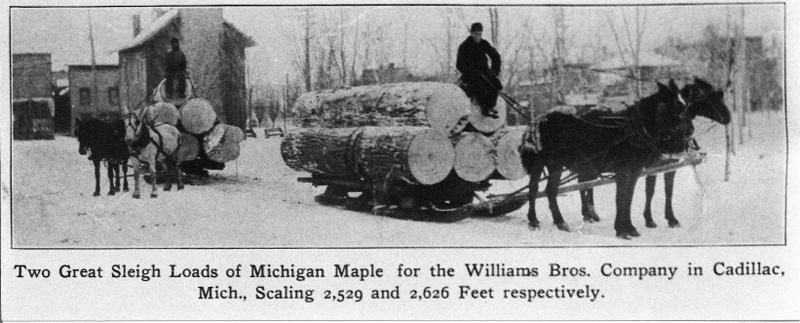 Sleigh Loads of Timber in Cadillac