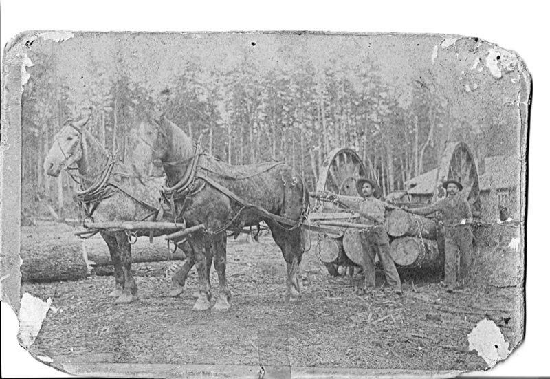 Horses and Big Wheels