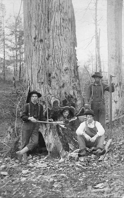 A View of Four Men and a Tree