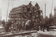 1_Cadillac-Lumber-Load-Of-Logs-Cadillac-Michigan