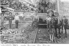 Cadillac-Lumber-Bowling-Pins
