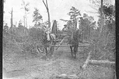 Cadillac-Lumber-E.-E.-Sours-Camp