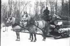 Cadillac-Lumber-Horse-Team-Pulling-Load-Of-Logs-On-Sled-5