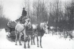 Cadillac-Lumber-Horse-Team-Pulling-Load-Of-Logs-On-Sled-6