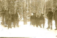 Cadillac-Lumber-Horses-work-in-deep-snow-at-R.-G.-Peters-camp