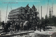 Cadillac-Lumber-Load-Of-Logs-Cadillac-Michigan-2