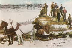 Cadillac-Lumber-Logging-At-Cadillac-Michigan