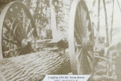 Cadillac-Lumber-Michigan-Logging-Wheels-4