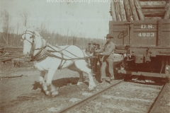 Cadillac-Lumber-White-Horse-Near-Railroad-Car
