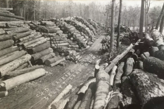 Wexford-County-Lumber-Cummer-And-Diggins-Company-Banking-Grounds-On-Jewett-Lake-between-Harietta-and-Mesick-Circa-1910s