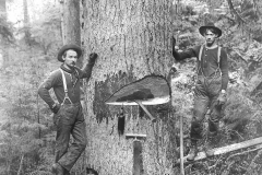 Wexford-County-Lumber-Timber-Harvest-Circa-1890s-9