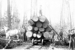 Loading a Logging Car