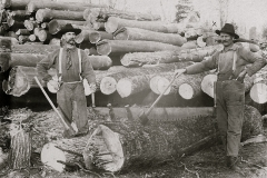 Harrietta Timber Men
