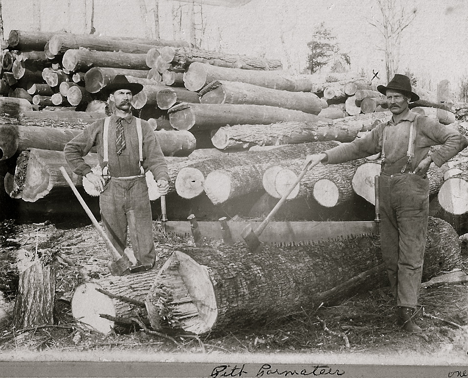 Harrietta Timber Men
