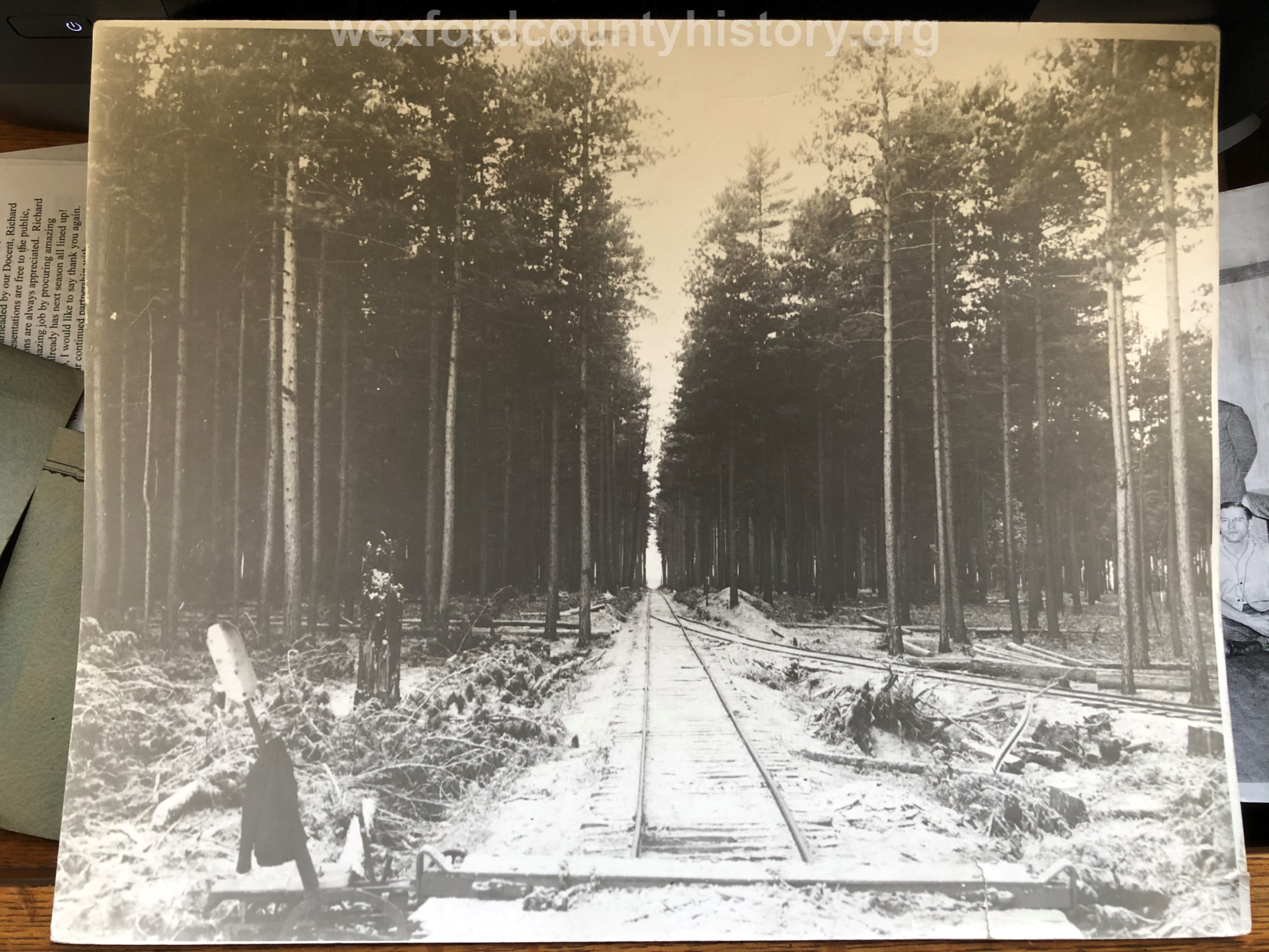 Rails through a Thick Forest