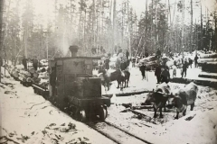 Cadillac-Lumber-1882-January-along-Cummer-Lumber-Cmpany-narrow-gauge-line-6-running-from-Lake-Cadillac-north-to-west-of-Haring