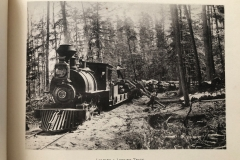 Cadillac-Lumber-Cummer-Workers-Loading-A-Logging-Train-circa-1891