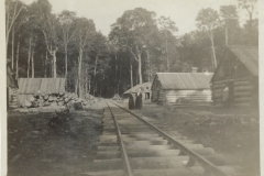 Cadillac-Lumber-Railroad-Passing-Through-Lumber-Camp