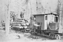 Cadillac-Lumber-removing-logs-from-the-forest
