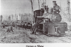 Shay Locomotive Transporting Logs