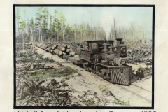 Shay Locomotive Log Train