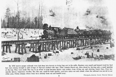 Logging Train on an Elevated Track