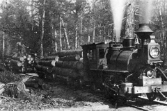 Timber Harvest Locomotive