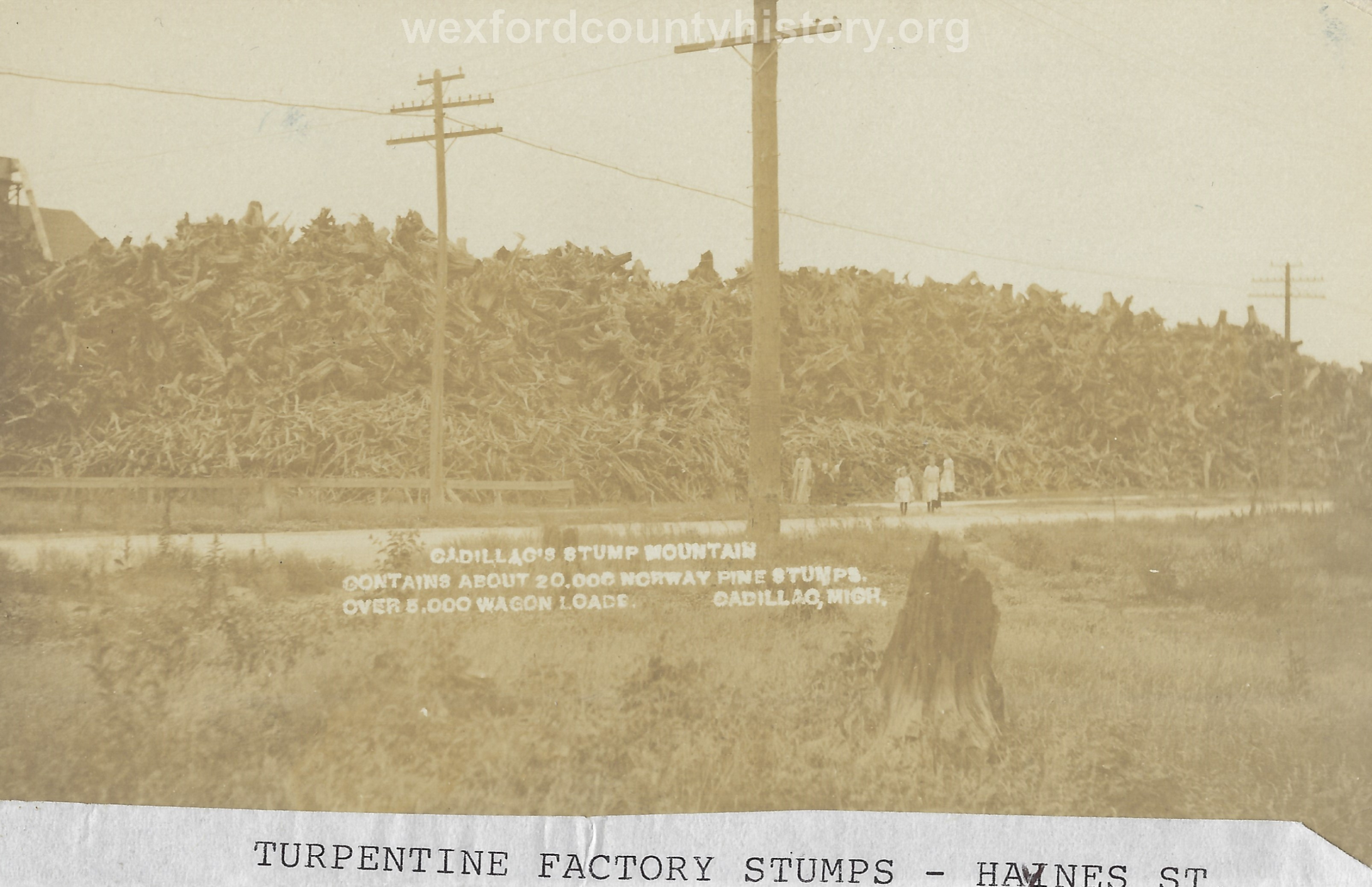Cadillac-Business-Turpentine-Factory