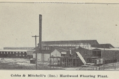 Cadillac-Business-Cobbs-And-Mitchell-Electric-Flooring-Plant-10