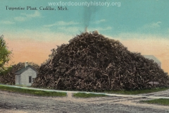 Cadillac-Business-Turpentine-Factory-8