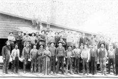 Factory Work Staff