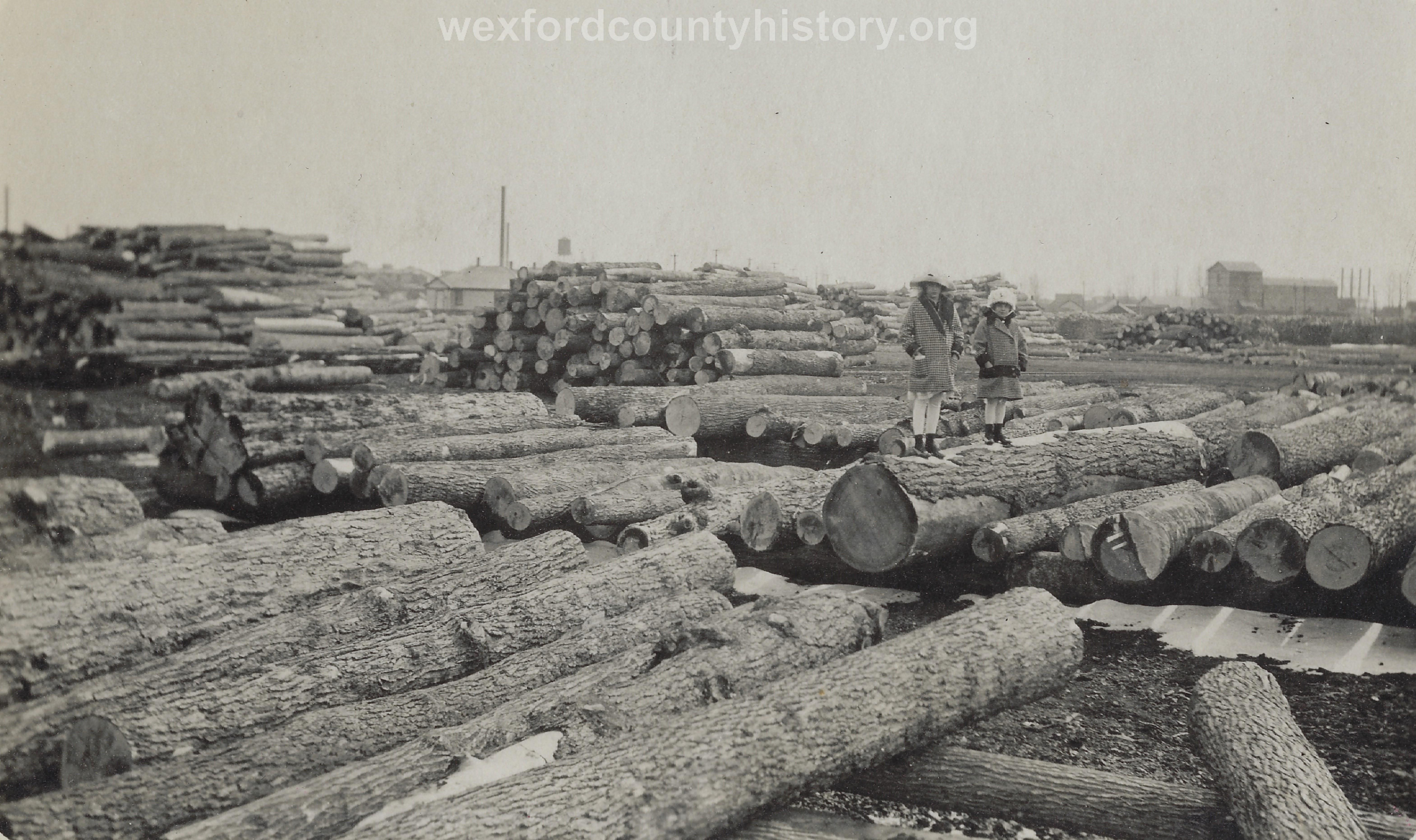 Cadillac-Lumber-Lumber-Yard-3