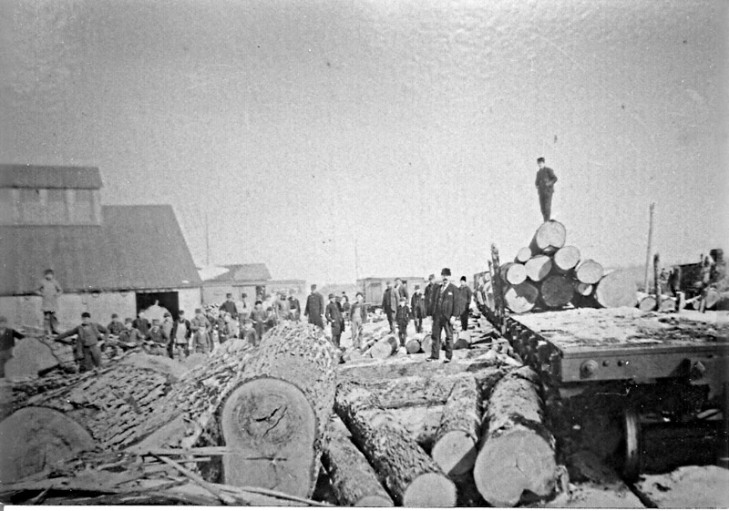 Large Logs Await Processing