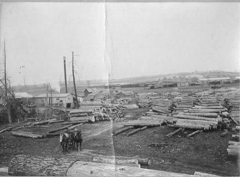 Lumber Mill Yard
