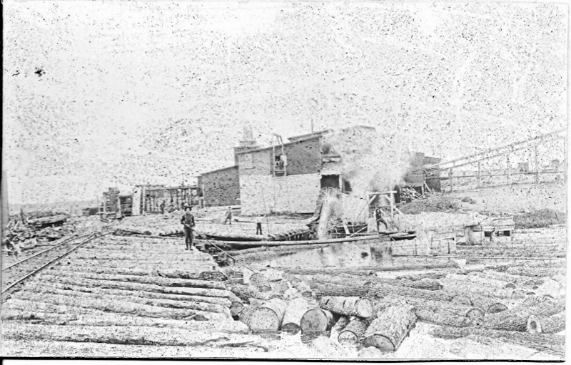 Timber Processing Mill