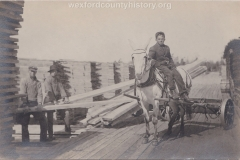 Cadillac-Lumber-Child-Laborer-on-White-Mule-Cadillac-Mi-1911