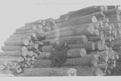Cadillac-Lumber-Logs-Ready-For-Processing