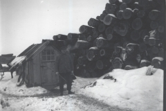 Cadillac-Lumber-Pile-Of-Logs-With-Man-And-Measuring-Stick